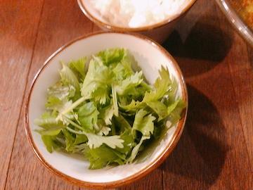 スパイスカレー麺(パクチー)