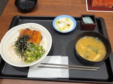 うなぎ三色丼(全体)